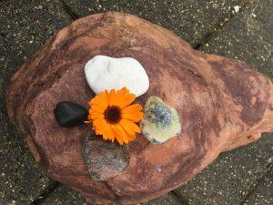 Medicinhjulet FindDinVej Ærø Blomster på vest sten