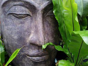 drømme og meditation i Ærøs skønne natur